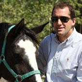 Cava Horse Coaching